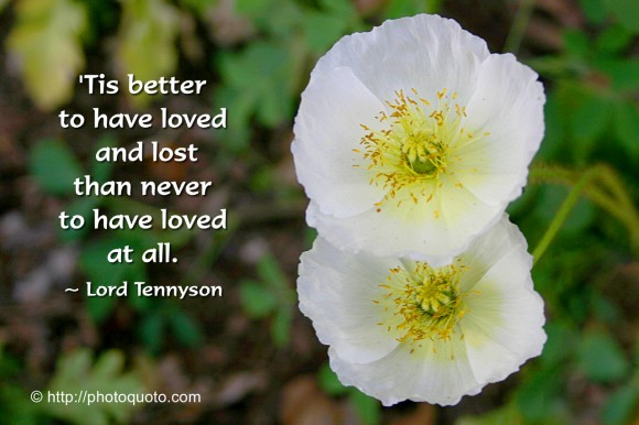 'Tis better to have loved and lost than never to have loved at all. ~ Lord Tennyson