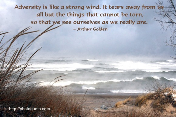 Adversity is like a strong wind.  It tears away from us all but the things that cannot be torn, so that we see ourselves as we really are. ~ Arthur Golden