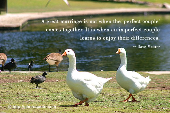 A great marriage is not when the 'perfect couple' comes together. It is when an imperfect couple learns to enjoy their differences. ~ Dave Meurer