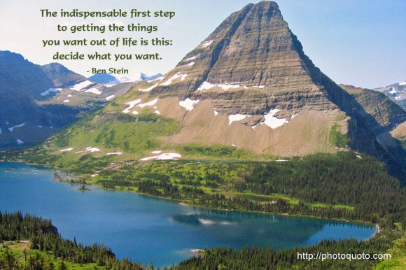 The indispensable first step  to getting the things  you want out of life is this:  decide what you want. - Ben Stein