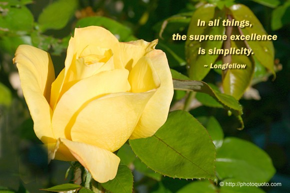 In all things, the supreme excellence is simplicity. ~ Longfellow