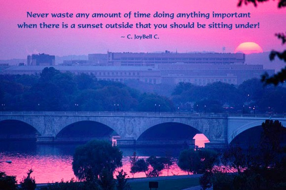 Never waste any amount of time doing anything important when there is a sunset outside that you should be sitting under! ~ C. JoyBell C.