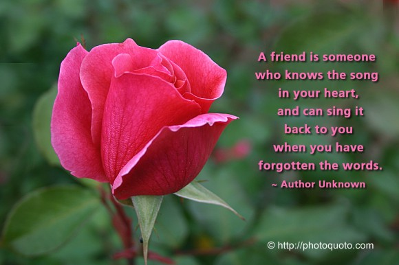 A friend is someone who knows the song in your heart, and can sing it back to you when you have forgotten the words. ~ Author Unknown
