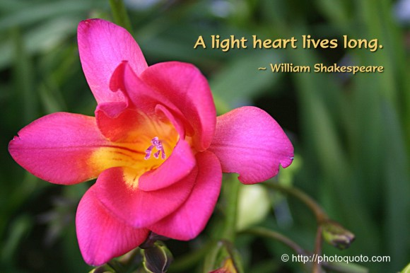 A light heart lives long. ~ William Shakespeare
