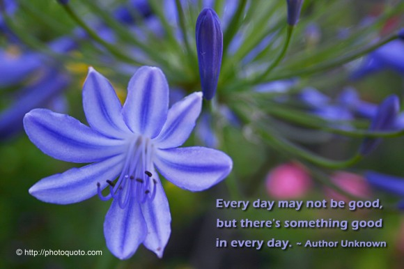 Every day may not be good, but there's something good in every day. ~ Author Unknown