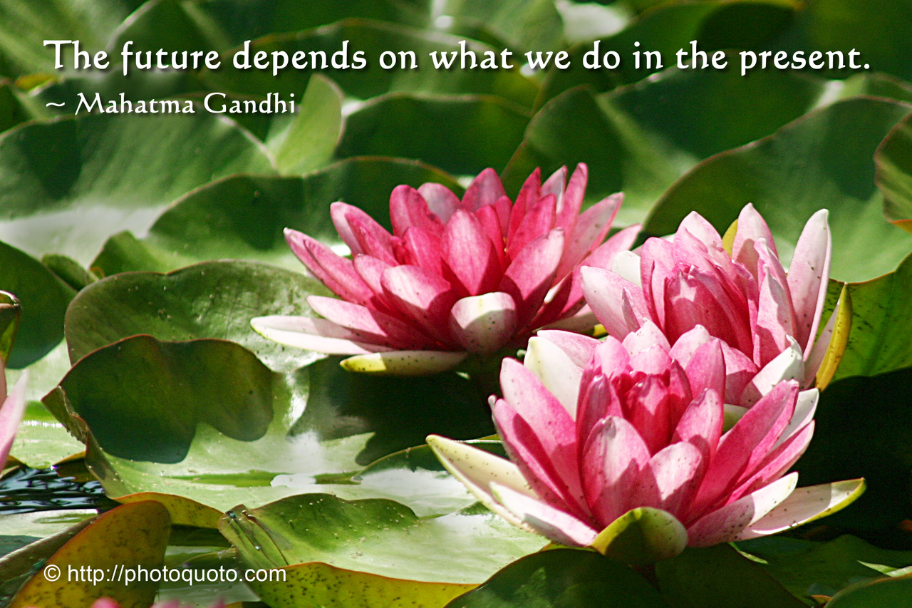 Sayings Quotes Mahatma Gandhi Photo Quoto
