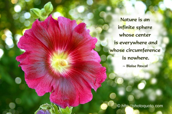 Nature is an infinite sphere whose center is everywhere and whose circumference is nowhere. ~  Blaise Pascal