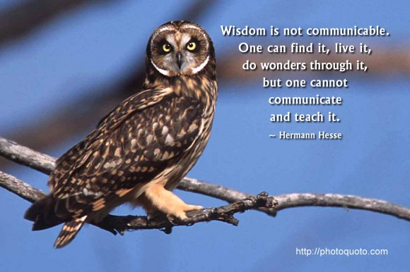 Wisdom is not communicable. One can find it, live it, do wonders through it,  but one cannot  communicate and teach it. ~ Hermann Hesse