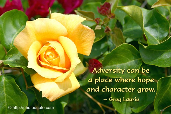 Adversity can be a place where hope and character grow. ~ Greg Laurie