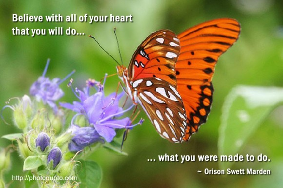 Believe with all of your heart that you will do what you were made to do. ~ Orison Swett Marden