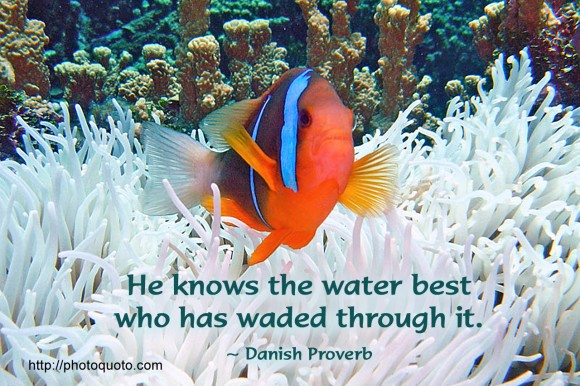 He knows the water best who has waded through it. ~ Danish Proverb