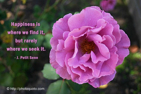 Happiness is where we find it, but rarely where we seek it. ~ J. Petit Senn