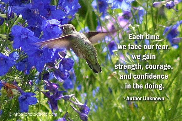 Each time we face our fear, we gain strength, courage, and confidence in the doing. ~ unknown