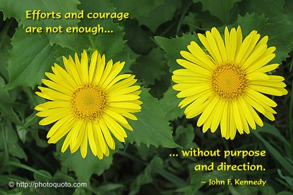 Efforts and courage are not enoughwithout purpose and direction. ~ John F. Kennedy