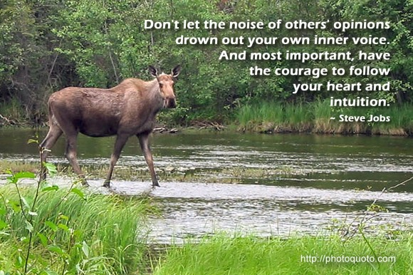 Don't let the noise of others' opinions drown out your own inner voice. And most important, have the courage to follow your heart and intuition.~ Steve Jobs