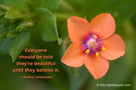 Everyone should be told they're beautiful until they believe it - Author Unknown