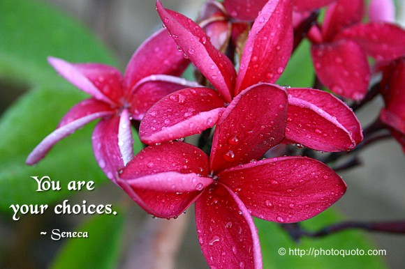 You are your choices. ~ Seneca