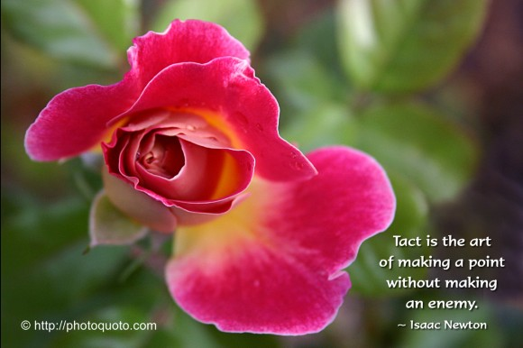 Tact is the art of making a point without making an enemy. ~ Isaac Newton