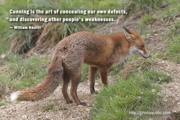 Cunning is the art of concealing our own defects, and discovering other people's weaknesses. ~ William Hazlitt