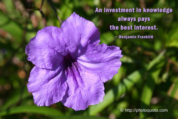 An investment in knowledge always pays the best interest. ~ Benjamin Franklin