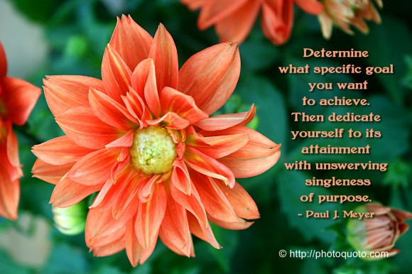 Determine what specific goal you want to achieve. Then dedicate yourself to its attainment with unswerving singleness of purpose. ~ Paul J. Meyer