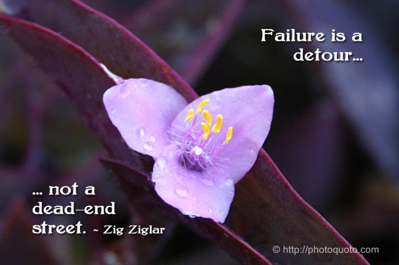 Failure is a detour, not a dead-end street.~ Zig Ziglar