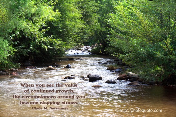 When you see the value of continued growth, the circumstances around you become stepping stones. ~ Clyde M. Narramore