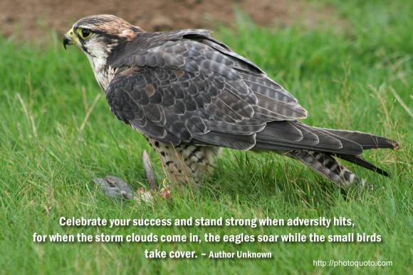 Celebrate your success and stand strong when adversity hits,  for when the storm clouds come in, the eagles soar while the small birds  take cover. ~ Author Unknown