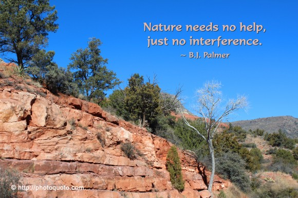 Nature needs no help, just no interference. ~ B.J. Palmer